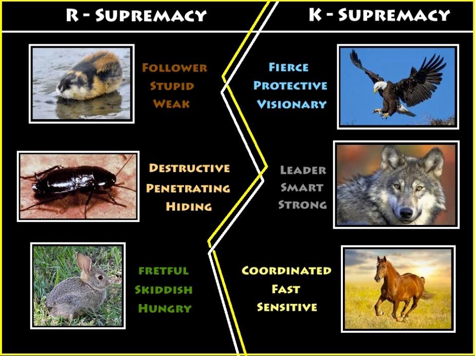 k supremacy.jpg