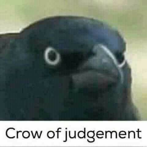 crow of judgement.jpg