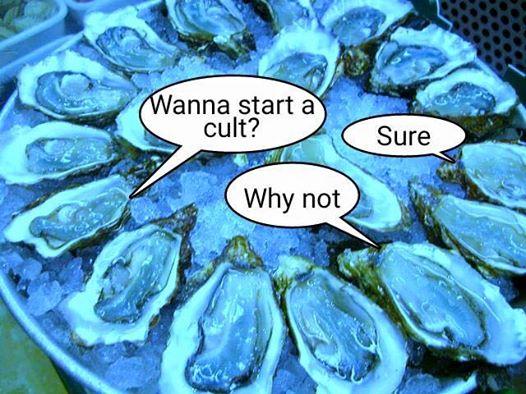 wanna start a cult oyster