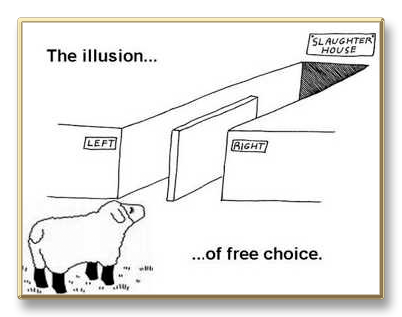 illusion-free-choice sheep democracy.png