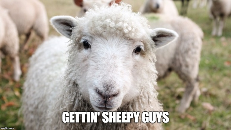 gettin sheepy guys